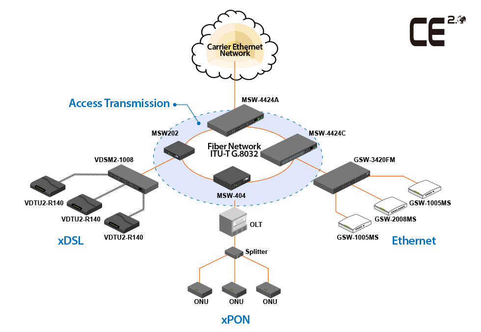 IP Backbone Transportation for Broadband Access Network